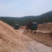 WOOD CHIPS CHEAP PRICE