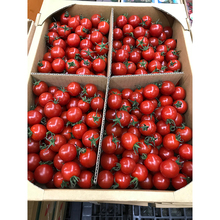 Asia-Pacific fruit vegetable red tomatoes with good price