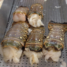 Quality Fresh Frozen Lobsters (Tail and Head available)