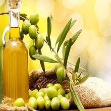 Premium High Quality Extra-Virgin/Pomace/Pure Olive Oil