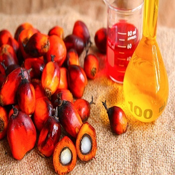 RBD palm oil for cooking