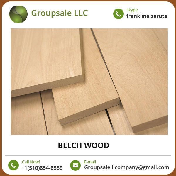 Optimum Quality Long Lasting Excellent Finish Beech Wood from Trusted Seller
