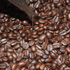 Gayo Arabica Roasted Beans