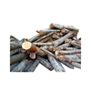 Eucalyptus log/timber from Vietnam at Best price