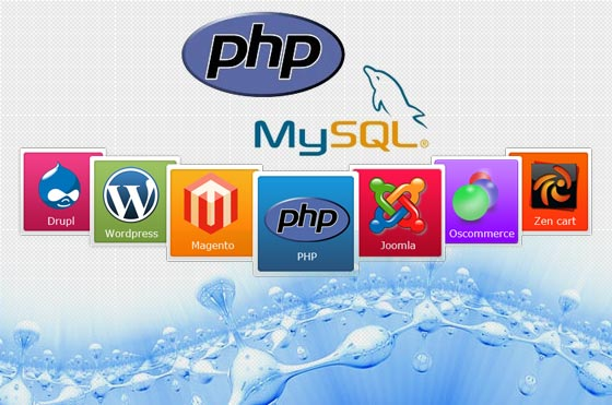 PHP WEBSITE DESIGN AND DEVELOPMENT