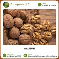 Wholesale Walnut Supplier Walnut Kernel At