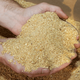 High protein non gmo soybean meal manufacturer
