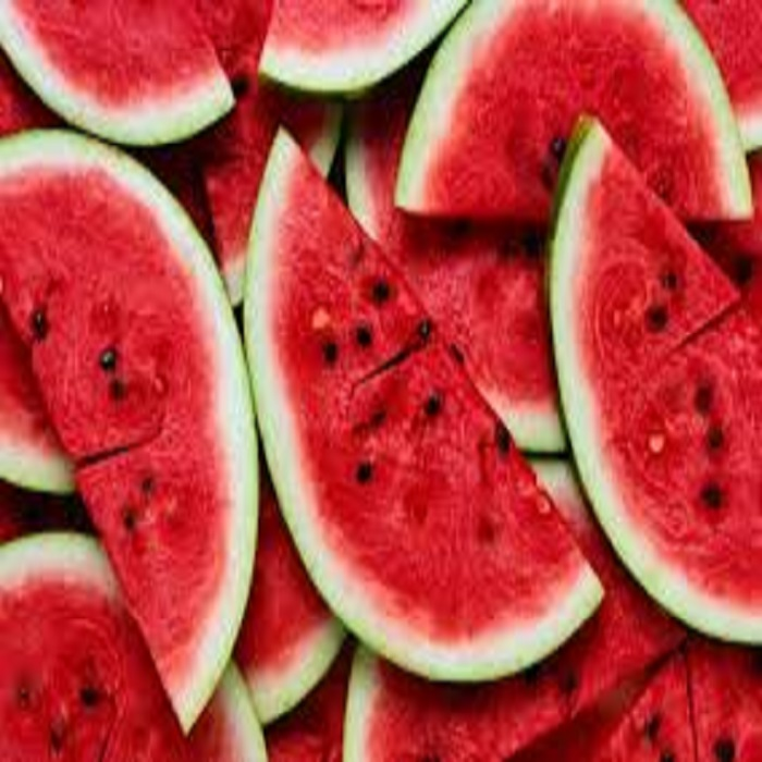 Fresh Cantaloupe Melon/High Quality Fresh Water Melon/Watermelon for sale