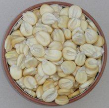 DRIED WHITE CORN