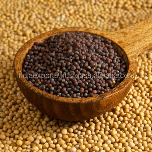 Highest Grade Organic Black Mustard Seeds