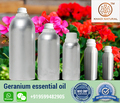 100% Pure & 100% Natural Geranium Essential Oil(Pelargonium Geranium)