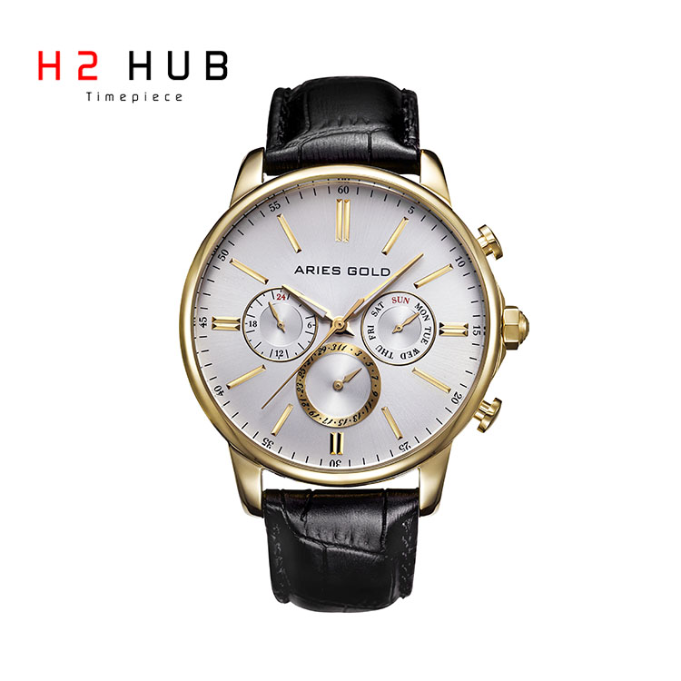 ARIES GOLD MULTIFUNCTION DOMED GLASS MEN WATCH 102