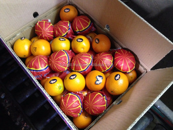 OUR Egyptian company is counted to be #5 all over the world exporting for Oranges