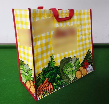 PP woven/non woven shopping bag - Evergreen and daystar