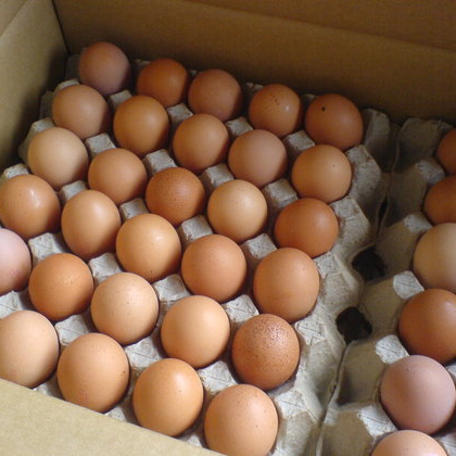 Fresh Brown Table Eggs Chicken Eggs In Bulk...