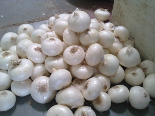 Fresh White Garlic/ Bulk Export For Grade A Garlics