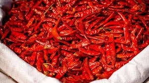 Premium S14 Dry Red Chilli for Canada market