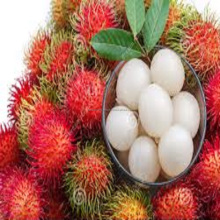Fresh Rambutant Fruit