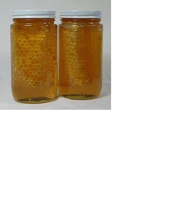 High Quality Pure Natural honey from Honey Bee