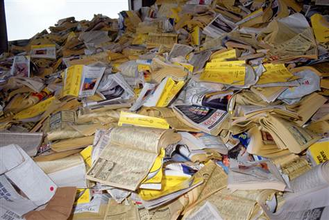 YELLOW PAGES TELEPHONE DIRECTORIES AND OVER ISSUED NEWSPAPERS(OINP)