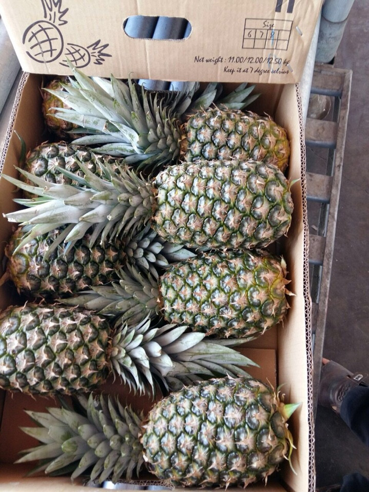 FRESH PINEAPPLE big size from viet nam