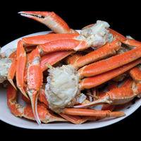 100% Frozen Red Snow Crab for Sale