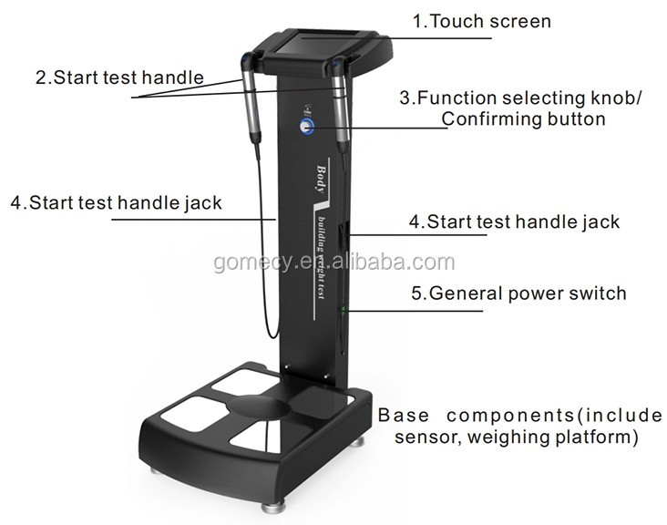 GOMECY NEW Vertical Body Composition Analyzer Body Composition Analysis