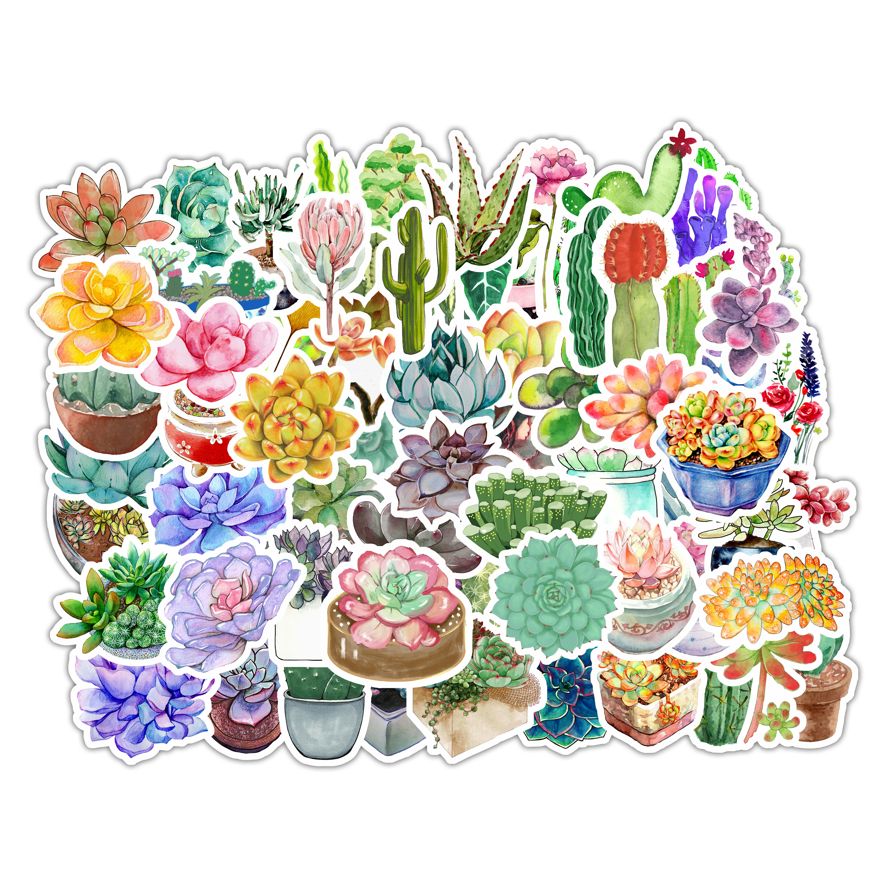 71pcs Bag No Repeat Cute Succulent Plants Flowers Graffiti Stickers Waterproof Pvc Vinyl Stickers For Laptop Notebook Buy Succulent Plants Stickers High Quality Stickers Pack Lovely Watercolor Flowers Succulent Cactus Leaves Stickers Product On