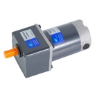25mm 12v DC Electric Motor (Rear Axle with Ratio 1:100)