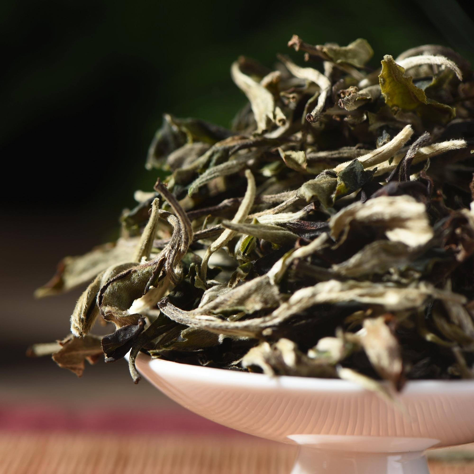 Yunnan highmountain arbor terrace tea moonlight loose leaf white tea - 4uTea | 4uTea.com