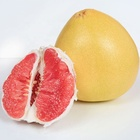 Hot selling grapefruit Fresh fruit free shipping in season red meat honey pomelo