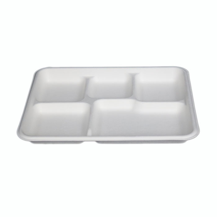 sugarcane 5 compartment biodegradable disposable lunch food tray