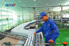 Juice Machine Kiwi Juice Processing Line/Kiwi Juice Production Line/Kiwi Juice Processing Plant Machine