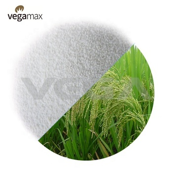 VEGA China whey protein powder wholesale