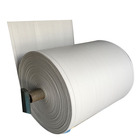 china factory plastic woven fabric packaging polypropylene roll for pp woven bag