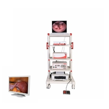Medico Ottico Rigida ENT Carrello Mobile Sistema Endoscopio Chirurgia Flessibile Video Endoscopia Set Completo Con La