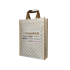 Fashion Nonwoven Lamination Tnt Non Woven Advertising Shopping Bag For Food Wholesale Shopping Bag Frees Sample Nonwoven Bag