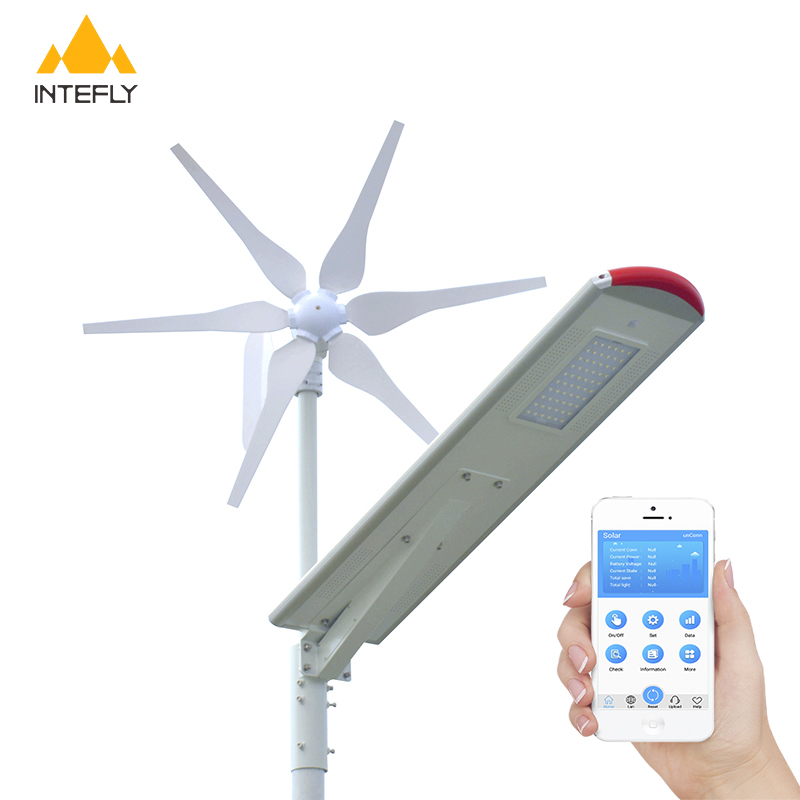 INTEFLY Wind Turbine All in one Solar 12v dc 30 Watt Solar led street light