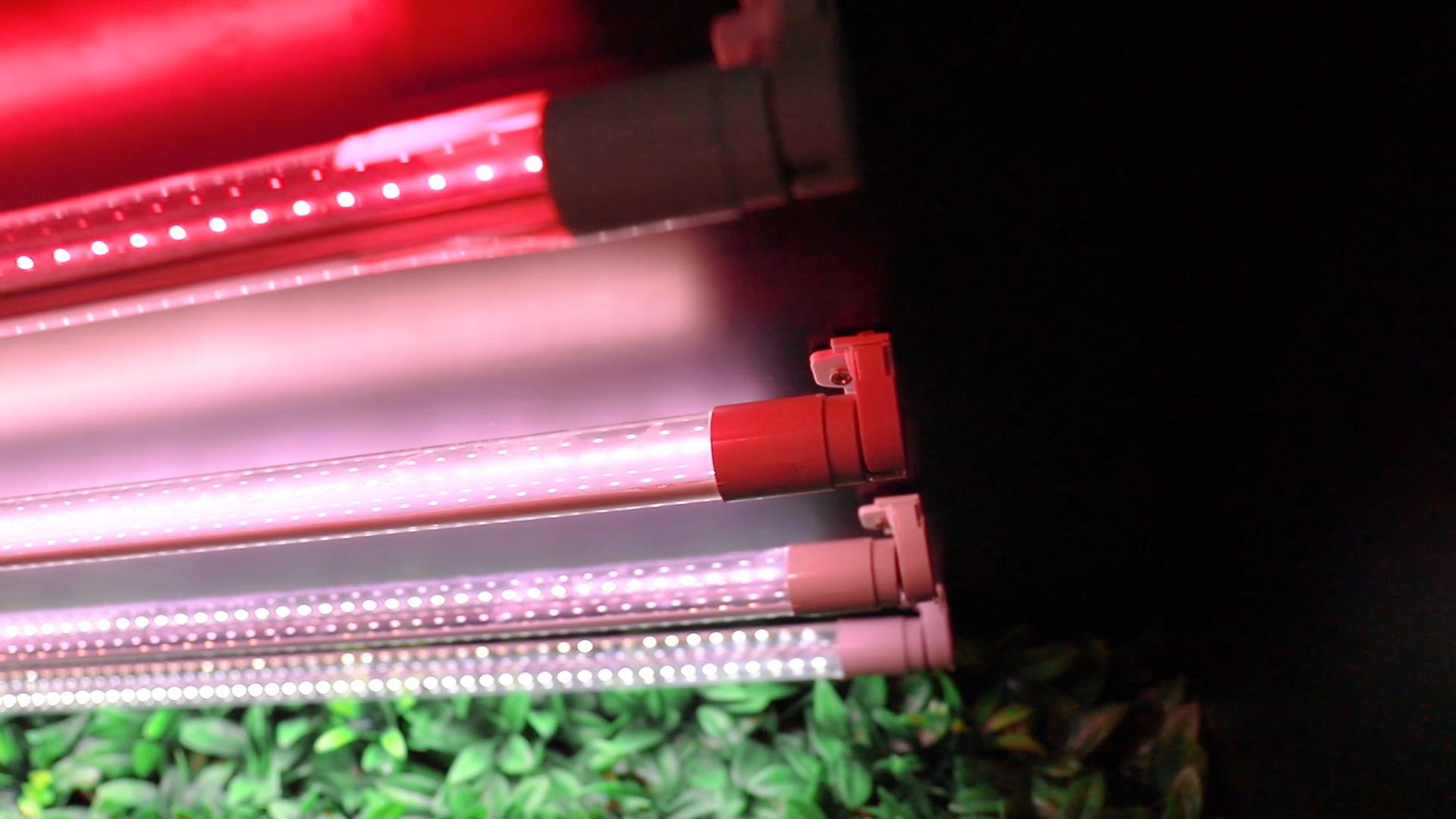 Agricultura Hydrocultuur Dubbele Eindigde Bar Strip Volledige Spectrum T5 T8 Led Grow Lichtpunt Led Grow Light Tube