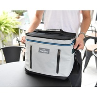 Drink fish wine insulated thermal can beer bottle large beverage soft lunch backpack cooler bag box picnic bag