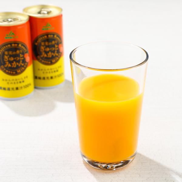 GYU TO MIKAN 100% Mandarin fruit orange juice bottling box from Japan