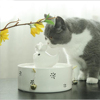 USB interface constant temperature heating ceramic pet drinking water cat and dog pet water dispenser