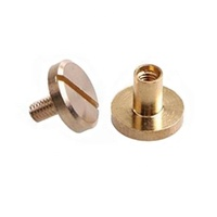 Customized Flat Slotted Brass Chicago Binding Screws