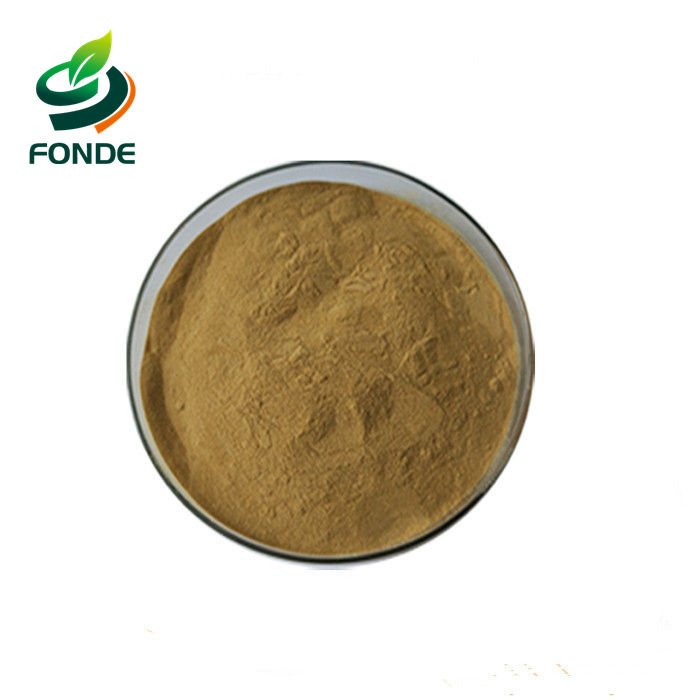 Best Chinese high quality low price instant black tea powder extract for carbonated drinks and beverage - 4uTea | 4uTea.com
