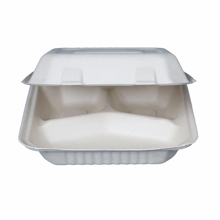 Compostabile biodegradabili contenitori per alimenti usa e getta