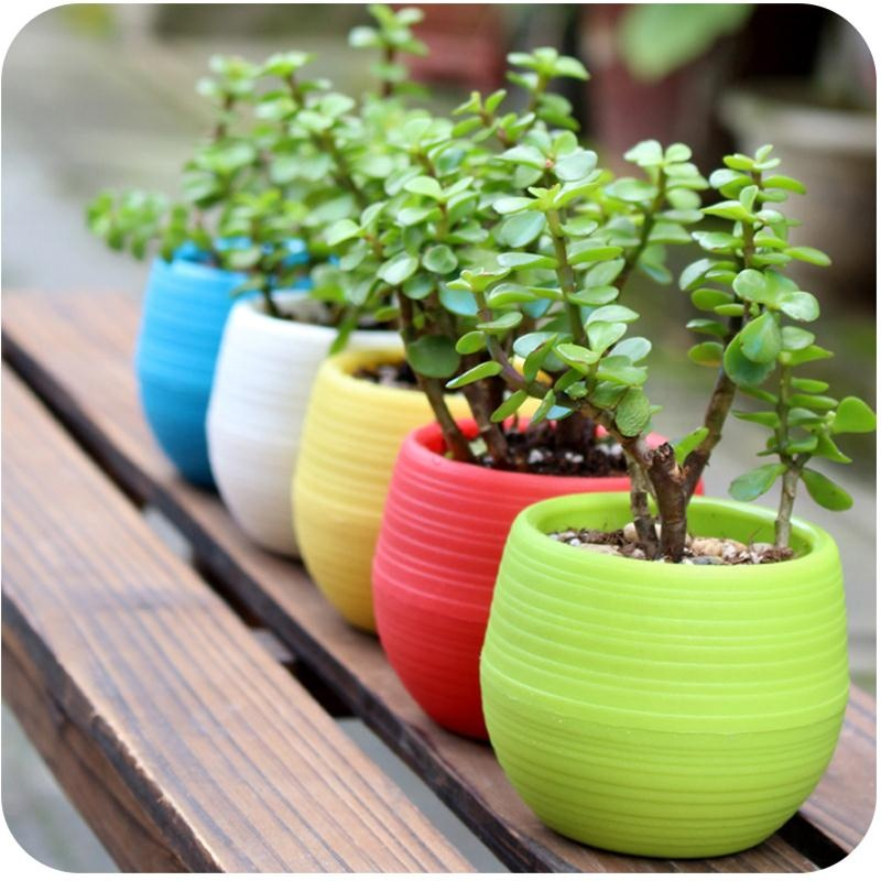 Milieuvriendelijke Bloempot Tuinieren Ronde Mini Plastic Bloempotten