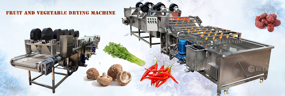 High quality algae sausage raisin hot air centrifugal dryer red chilli saffron herb meat fish drying machine