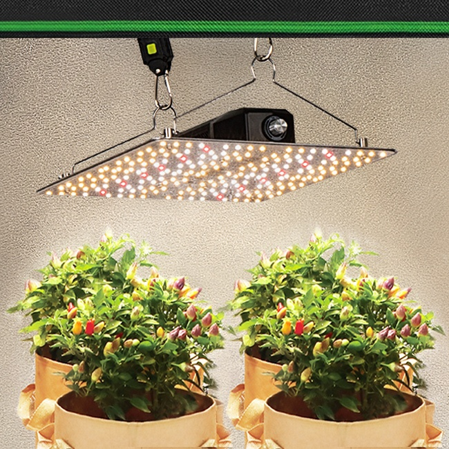Sinowell Led Board Best Selling QB 240w 480w Red Led Grow Lights, Samsung lm301b lm301h with IR 660nm leds