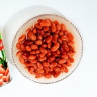 Delicious health canned pinto beans in tin by different specifications