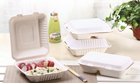 Plates Bamboo Plates Disposable Disposable Food Packing Microwavable Bamboo Plates
